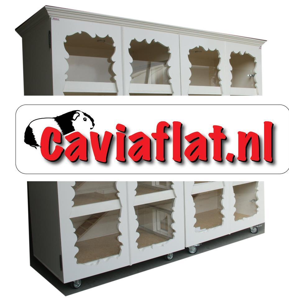 Cavia Flat